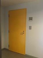 yellowdoor2